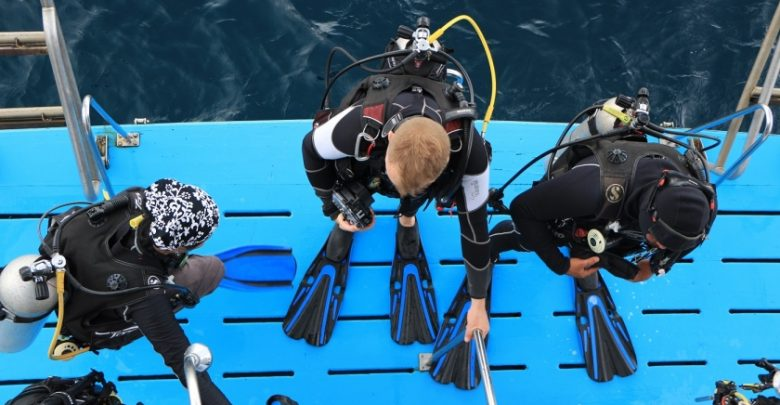 Reef-World's Green Fins initiative helps dive and snorkel operators reduce their environmental impact. Photo by The Reef-World Foundation