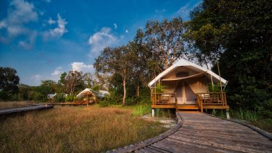 Photo of Cardamom Tented Camp